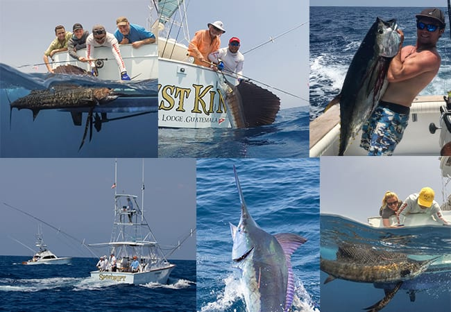 April forecast sunny skies with a high chance of sailfish for Chevy florida fishing report