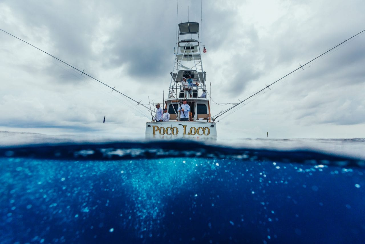 Kick Plastic - Casa Vieja Lodge & Sportfishing Fleet